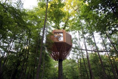 Origin House, Rumah Pohon Bak Sarang Burung yang Nyaman dan Penuh Petualangan