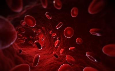 Cegah Anemia, 5 Jenis Nutrisi Ini Bantu Tingkatkan Produksi Sel Darah Merah
