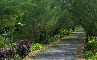 Surabaya Surga Hutan Kota, Bu Risma: Libur Akhir Tahun Jangan ke Luar Negeri