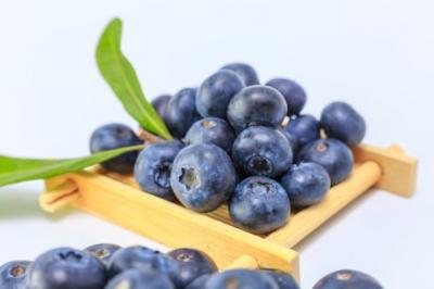 Yuk Rajin Makan Buah Blueberry, Ini 6 Manfaatnya untuk Tubuh