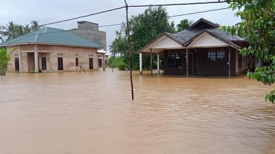 10 Kabupaten Kota di Kalimantan Selatan Terdampak Banjir
