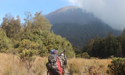 Selama PPKM, Duh Jumlah Pendaki Gunung Lawu Paling Banyak 50 Orang