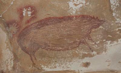 Peneliti Temukan Lukisan Tertua Bergambar Babi Hutan di Sulawesi