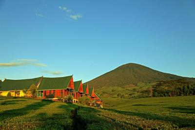 Ambil Kayu Panjang Umur, 10 Pendaki Gunung Dempo Kena Blacklist 3 Tahun