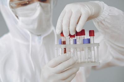 Selain Corona, Ada Virus Nipah yang Juga Bisa Sebabkan Pandemi