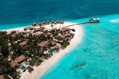 Wanita Hamil Hilang saat Liburan di Maladewa, Suami Tawarkan Rp1,4 Miliar bagi Penemu