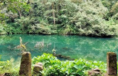 7 Spot Wisata Gunung Gede Pangrango, Pemandangannya Menakjubkan!