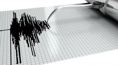 Gempa di Parigi Moutong Terasa Hingga ke Palu
