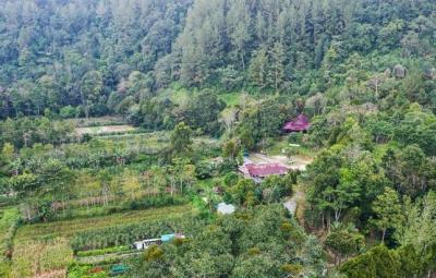 Taman Eden 100 Tawarkan Segudang Pesona, Mulai Air Terjun hingga Spot Camping