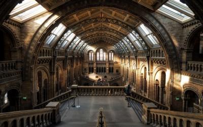 Studi: Museum Tempat Aktivitas Indoor Paling Aman dari Covid-19