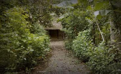 Viral Kampung Mati di Ponorogo, Ditinggal Penduduk Hanya Masjid yang Tersisa