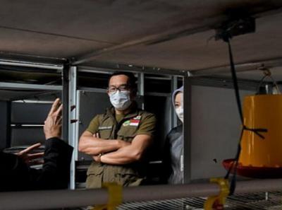 Bangun Apartemen Ayam, Ridwan Kamil: Offtaker Siap Beli 2 Juta Ekor Bulan