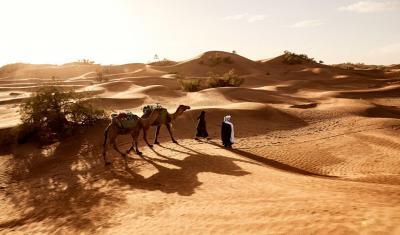 Kisah Nabi Musa Murka Kepada Kaumnya hingga Memukul Batu Sungai 7 Pukulan
