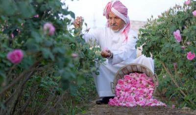 Bunga Mawar di Arab Saudi Bermekaran di Bulan Ramadhan