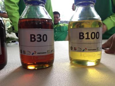 Minyak Jelantah Bisa Penuhi 32% Kebutuhan Biodiesel tapi Ada Syaratnya