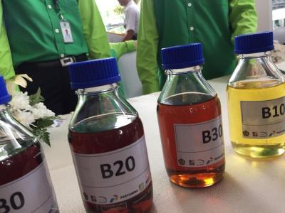 Sulap Minyak Jelantah Jadi Biodiesel, Bocah Ini Raup Rp200 Juta Bulan