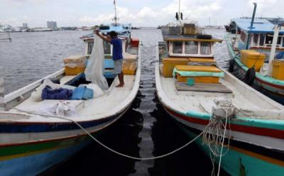 RI Kirim 11 Ton Ikan Beku ke Singapura