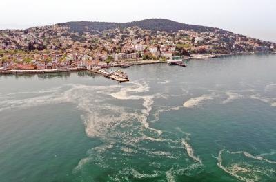 "Laut Marmara Tercemar Lendir ""Agar-Agar"", Pariwisata Turki Terancam"