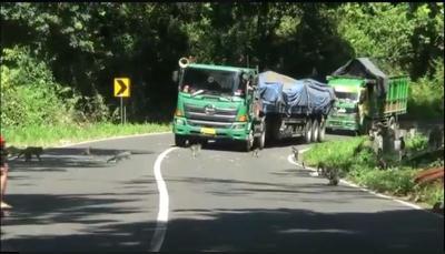 Jalur Tengkorak Pekalongan-Demak, Hati-hati di Alas Roban dan Perbatasan Semarang