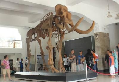 Museum Geologi, Wisata Sejarah Instagramable di Bandung