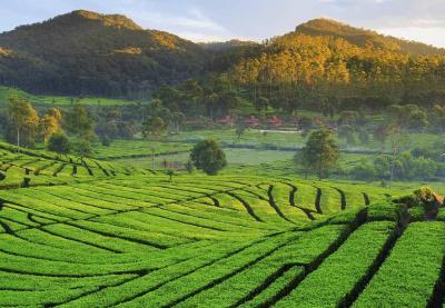 5 Destinasi Wisata Instagramable di Jawa Barat, Mana Favoritmu?