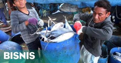 Sempat Ditangkap Malaysia, Akhirnya 5 Nelayan RI Dibebaskan