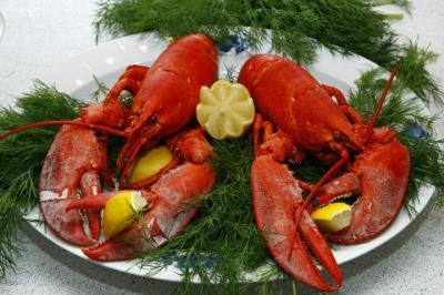 Kesulitan Masak Lobster? Ikuti 3 Langkah Mudah Ini Saja