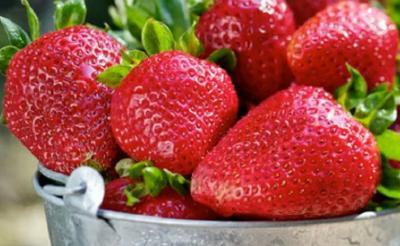 5 Manfaat Stroberi bagi Kesehatan dan Kecantikan, Apa Saja?