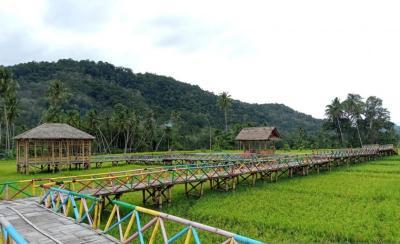 Mengintip Sawah Saba Rang, Wisata Baru Karya Warga Desa Padang Bulan