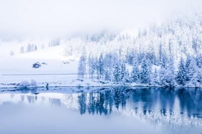 Alquran dan Sains Jelaskan Terjadinya Musim Dingin, Semi, hingga Gugur