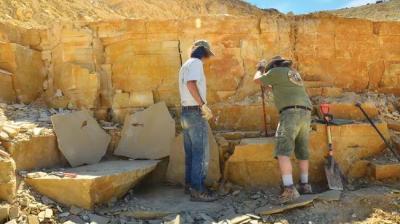 Fosil Hewan Tertua di Dunia Ditemukan, Umurnya 890 Juta Tahun!