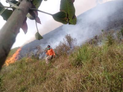 14 Hektare Lahan di Dairi Sumut Terbakar, Satgas Gabungan Berjibaku Padamkan