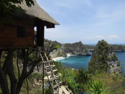 Rumah Pohon Molenteng, Spot Terbaik Menikmati Keindahan Nusa Penida Bali