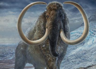 Ilmuwan Klaim Bisa Hidupkan Kembali Mammoth yang Punah Ribuan Tahun Silam