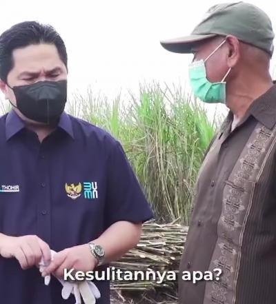 Ketika Erick Thohir Diajarkan Petani Tebang Pohon Tebu, Hasilnya?
