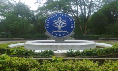 Teknologi Tungku Sekam IPB University Dilirik KBRI Suriname