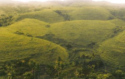 Bukit Teletubbies Nusa Penida, Wisata Instagramable Elok Menyejukkan Mata