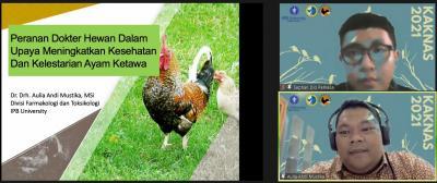 Ada Kontes Ayam Ketawa Online Tingkat Nasional di FKH IPB University
