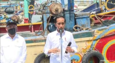 Jokowi: Rehabilitasi Mangrove Terus Dilakukan, Tahun Ini 34 Ribu Hektare