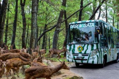 Baru 3 Tempat Wisata di Kabupaten Bogor Diizinkan Buka, Apa Saja?