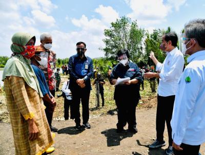 Tanam Mangrove di Cilacap, Presiden Jokowi Upayakan Pemulihan Lingkungan dan Mitigasi Iklim