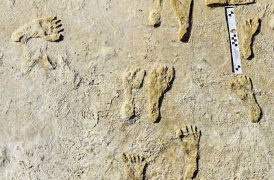 Temuan Jejak Kaki Berumur 23.000 Tahun Ungkap Kehidupan Zaman Es