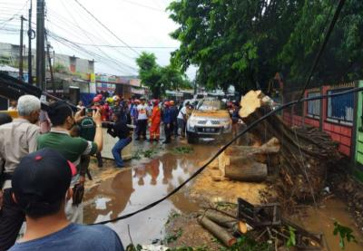 Penampakan Depok Usai Hujan Es Disertai Angin Kencang, Mobil Ringsek Pohon Bertumbangan