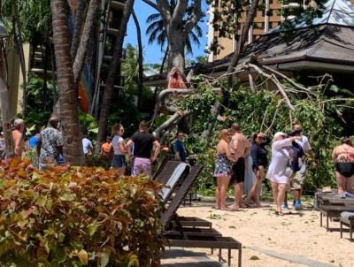 Lagi Enak-Enak Berjemur, 7 Turis Apes Tertimpa Pohon di Hawaii