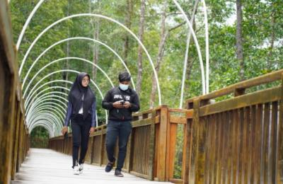 Eco Wisata Mangrove Perketat Prokes, Ratusan Masker Gratis Disiapkan bagi Pelancong