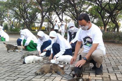 Momen Anies Beri Makan Kucing Liar di Ancol Peringati Hari Rabies