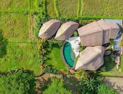 Penampakan Villa Omah Padi Milik Anggun C Sasmi di Bali, Sungguh Adem dan Menenangkan
