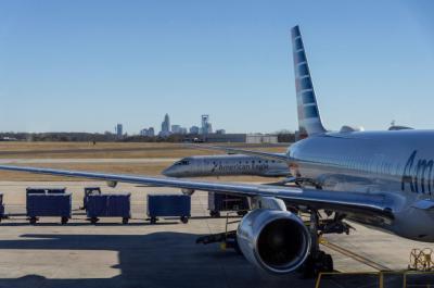 Ada Serangan Burung, Pesawat Ini Terpaksa Putar Balik ke Bandara