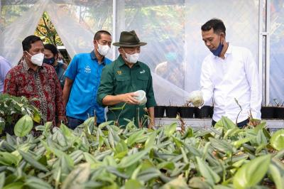 Pasar Tanaman Hias Tembus Rp3.000 Triliun, Indonesia Baru Raup Keuntungan 0,01%