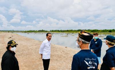 Jokowi Tanam Mangrove Bareng Dubes Negara Sahabat dan Masyarakat Tana Tidung